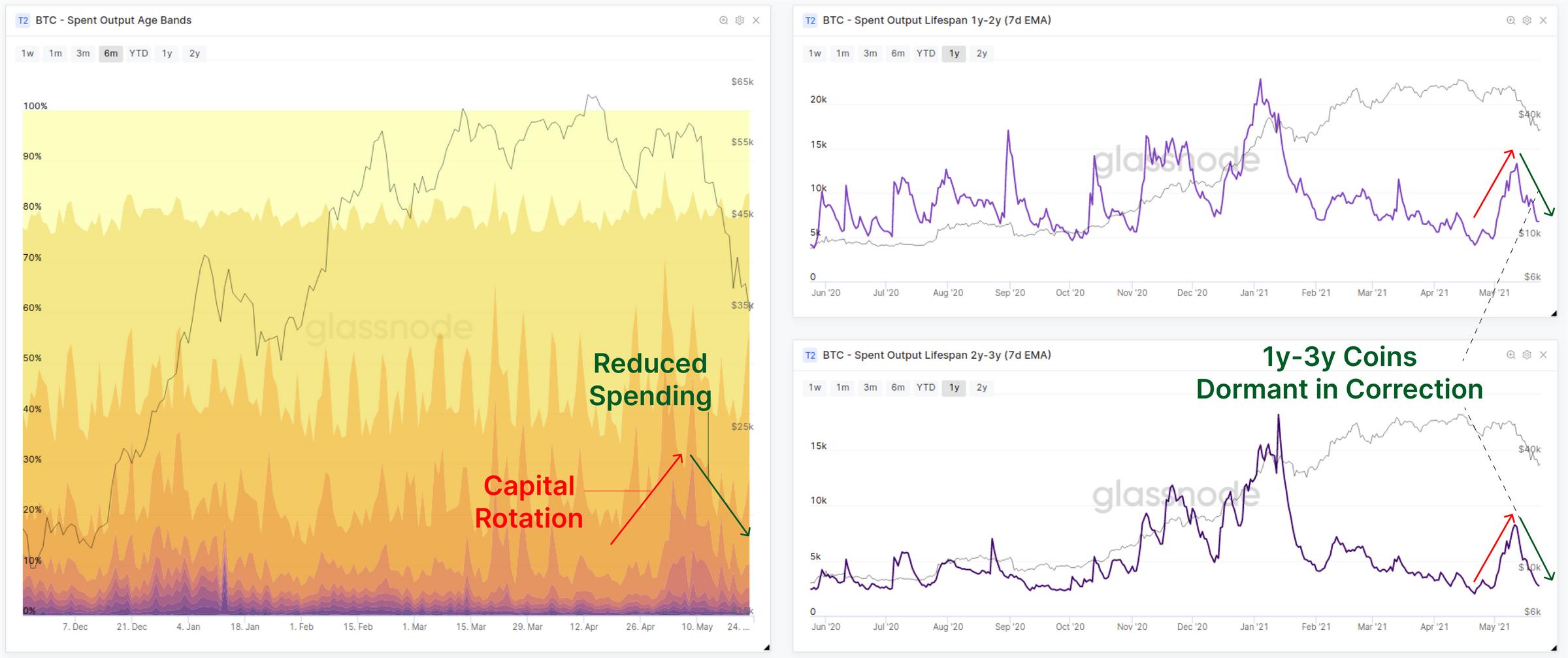 链上数据详解丨一周跌幅近50%,比特币Hodler们在干嘛?